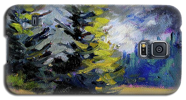 Galaxy S5 Case featuring the painting Olympic Range by Nancy Merkle