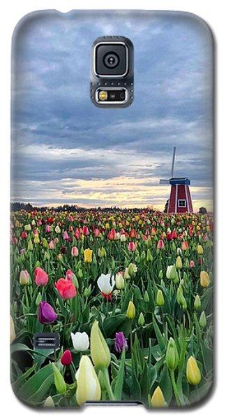 Ominous Spring Skies Galaxy S5 Case