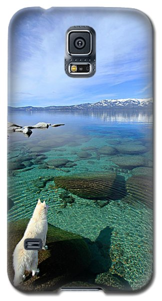 On A Clear Day You Can See Forever Galaxy S5 Case