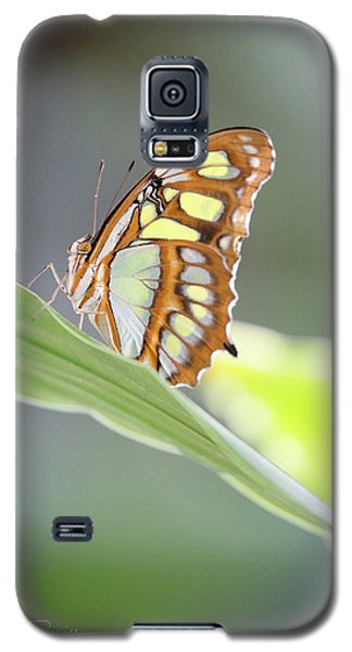 On A Leaf Galaxy S5 Case
