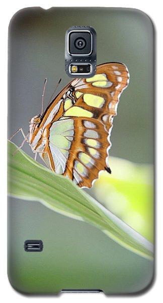 On A Leaf Galaxy S5 Case