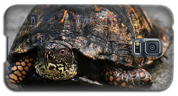 Galaxy S5 Case featuring the photograph On A Mission by Skip Willits