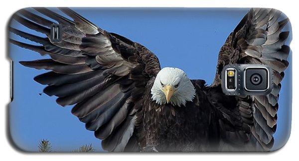 On Display Galaxy S5 Case