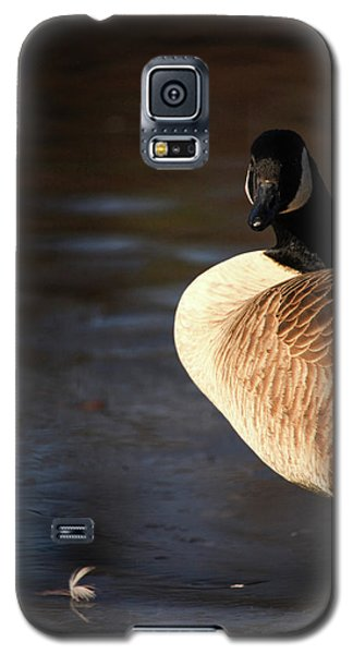 Galaxy S5 Case featuring the photograph On Ice by Karol Livote