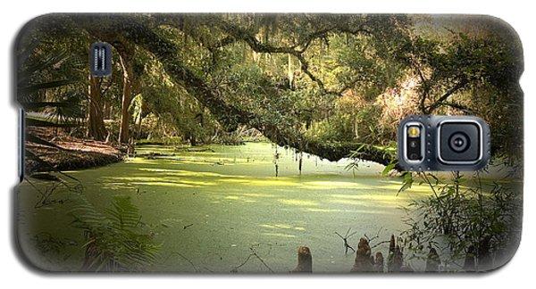 Alligator Galaxy S5 Case - On Swamp's Edge by Scott Pellegrin
