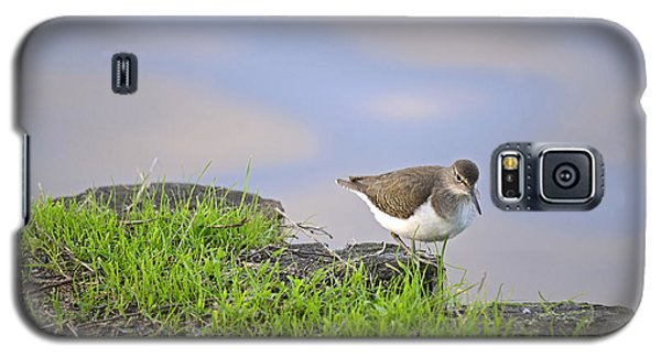 On The Banks Of The Yarkon Galaxy S5 Case