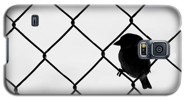 On The Fence Galaxy S5 Case by Afrodita Ellerman