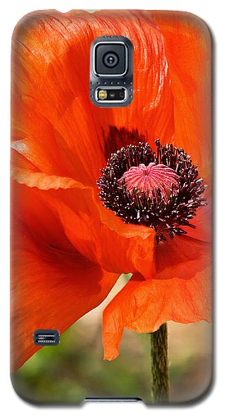 On The Fringe Galaxy S5 Case