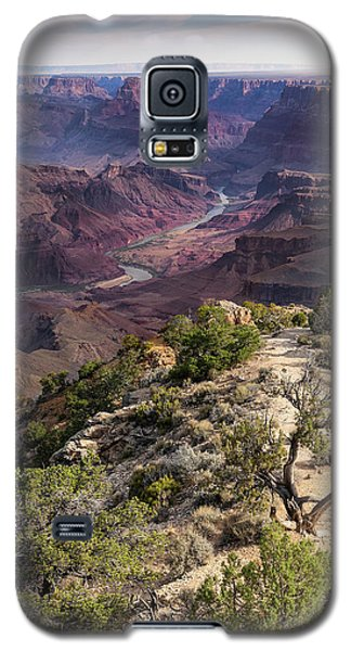 Looking Out The Front Door Galaxy S5 Case