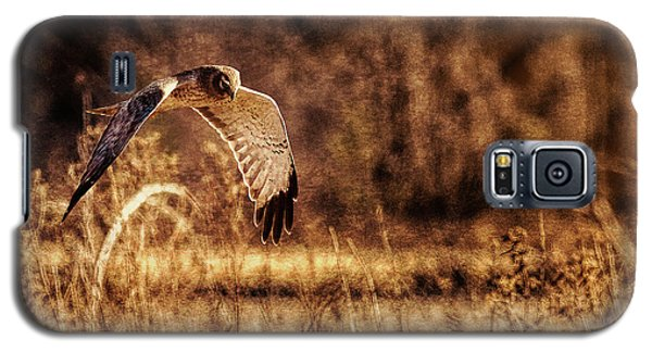 Galaxy S5 Case featuring the photograph On The Hunt by Annette Hugen