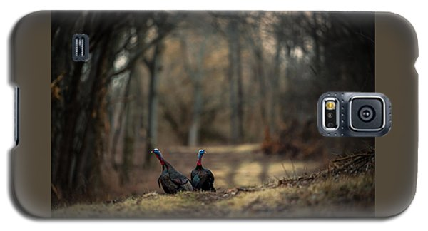 On The Woodlot Path Galaxy S5 Case
