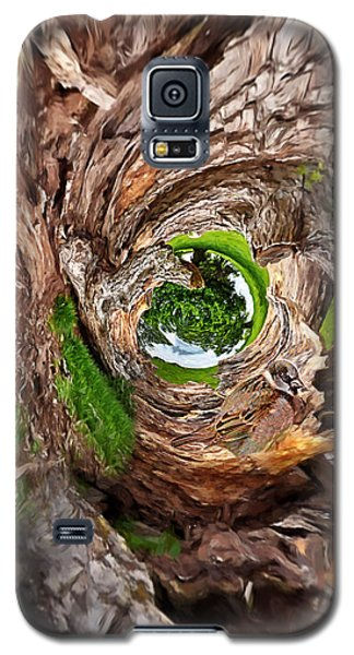Galaxy S5 Case featuring the photograph Once A Tree by Pennie  McCracken