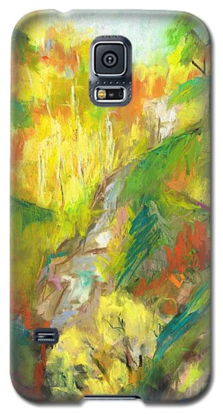 Galaxy S5 Case featuring the painting Once A Waterfalls by Frances Marino