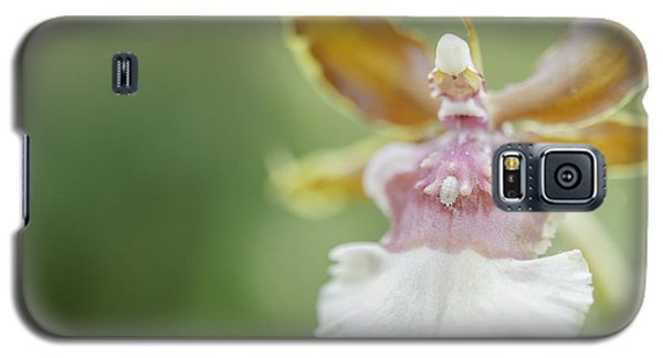 Oncidium Surprise Galaxy S5 Case by Mary Angelini