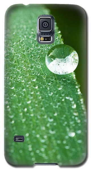 Galaxy S5 Case featuring the photograph One Big Drop by Monte Stevens