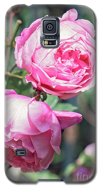Galaxy S5 Case featuring the photograph One Bold, One Bashful by Linda Lees