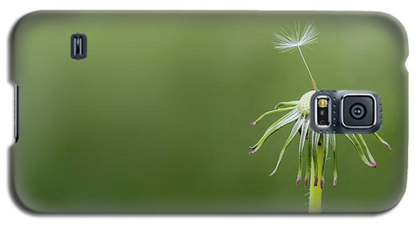 Galaxy S5 Case featuring the photograph One Dandy by Bess Hamiti
