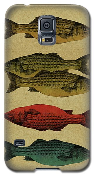 One Fish, Two Fish . . . Galaxy S5 Case by Meg Shearer