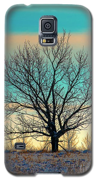 Galaxy S5 Case featuring the photograph One by Nina Stavlund