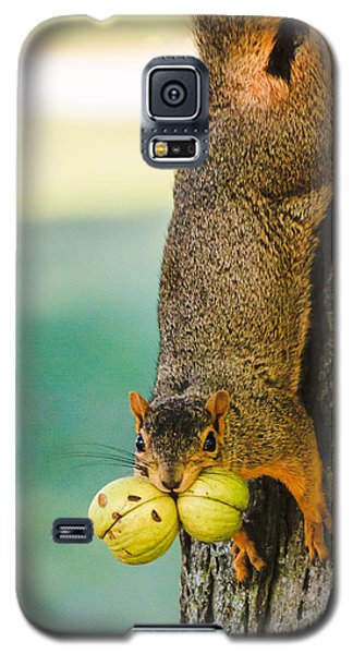 One Nut Is Never Enough Galaxy S5 Case