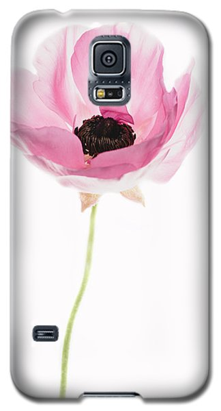 One Pink Beauty Galaxy S5 Case by Rebecca Cozart