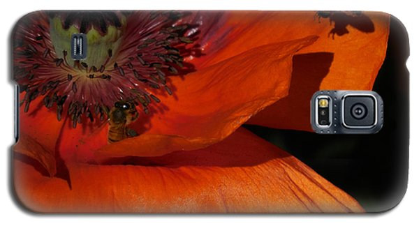One Poppy And A  Bee Galaxy S5 Case