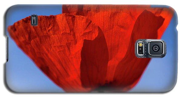One Red Poppy Galaxy S5 Case