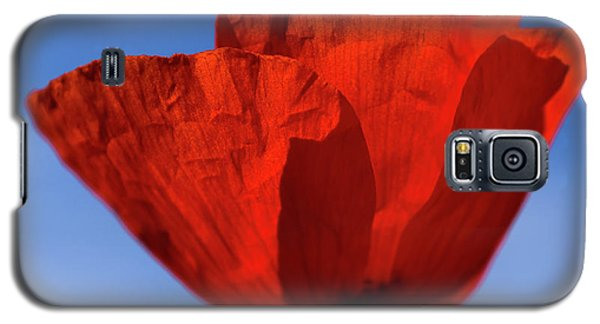 One Red Poppy Galaxy S5 Case