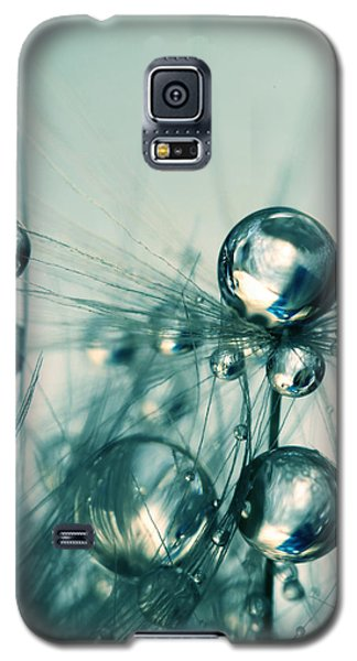 Galaxy S5 Case featuring the photograph One Seed With Blue Drops by Sharon Johnstone