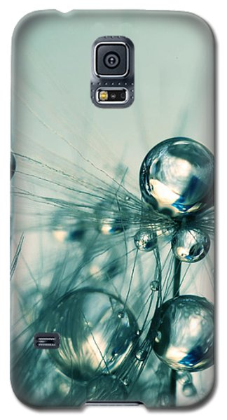 One Seed With Blue Drops Galaxy S5 Case