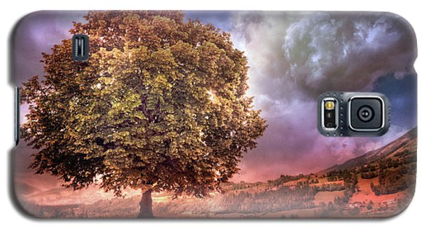 Galaxy S5 Case featuring the photograph One Tree In The Meadow by Debra and Dave Vanderlaan