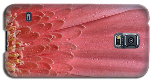 Oopsy Daisy Galaxy S5 Case by Shelley Neff