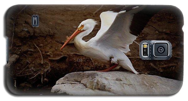 Open Wings Galaxy S5 Case