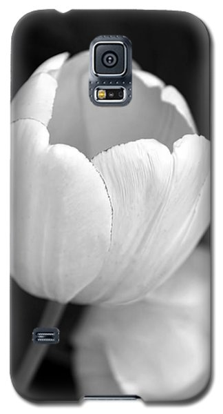 Opening Tulip Flower Black And White Galaxy S5 Case