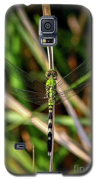 Galaxy S5 Case featuring the photograph Openminded Green Dragonfly Art by Reid Callaway