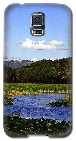 Opulence Galaxy S5 Case
