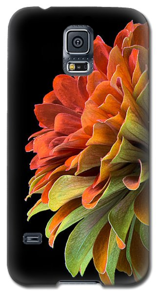 Orange And Green Zinnia  Galaxy S5 Case