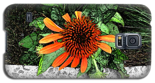 Galaxy S5 Case featuring the photograph Orange At Highline Nyc by Joan  Minchak