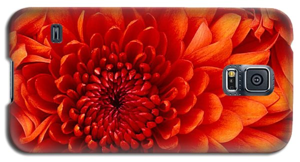 Orange Bloom Galaxy S5 Case