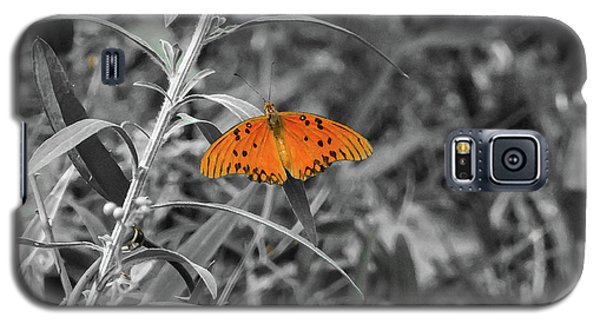Orange Butterfly In Black And White Background Galaxy S5 Case