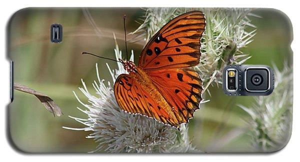 Orange Butterfly Galaxy S5 Case