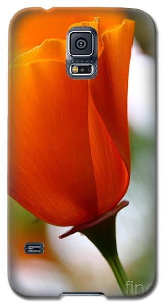 Orange California Poppy . 7d14789 Galaxy S5 Case