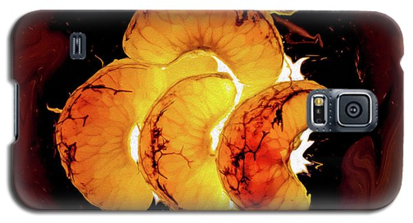 Orange Choc Galaxy S5 Case