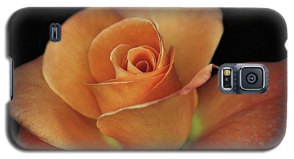 Orange Cream Galaxy S5 Case