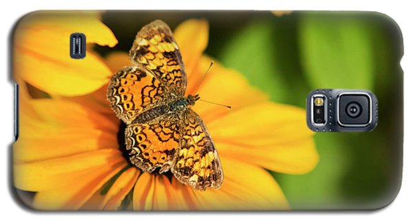 Galaxy S5 Case featuring the photograph Orange Crescent Butterfly by Christina Rollo