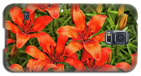 Galaxy S5 Case featuring the photograph Orange Day Lillies by Mary Jo Allen