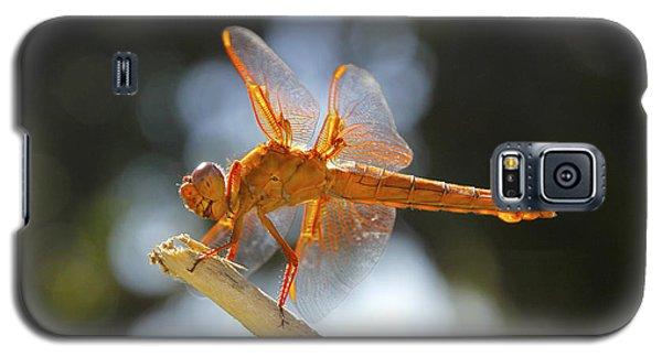 Orange Dragonfly Galaxy S5 Case