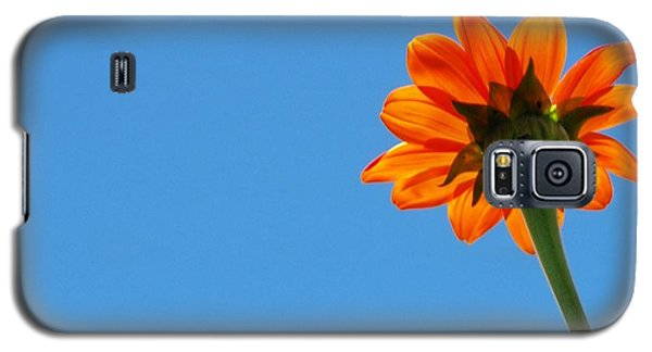 Galaxy S5 Case featuring the photograph Orange Flower On Blue Sky by Debbie Karnes