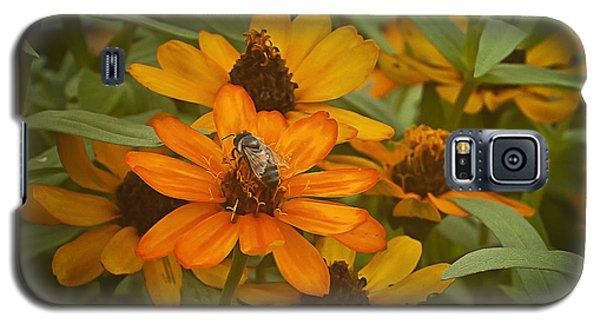 Orange Flowers And Bee Galaxy S5 Case
