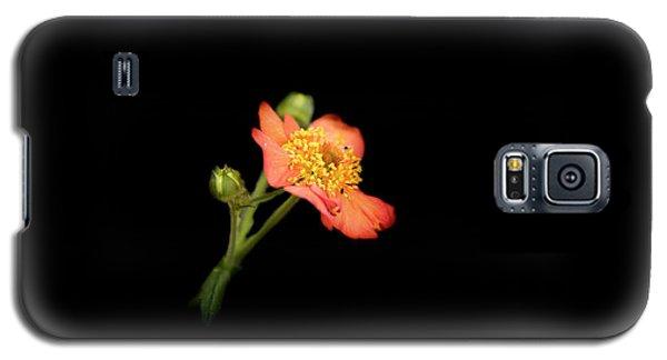 Orange Flowers In The Summer Galaxy S5 Case